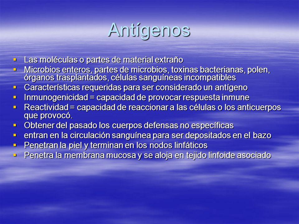 Antígenos Las moléculas o partes de material extraño Las moléculas o partes de material extraño Microbios enteros, partes de microbios, toxinas bacter