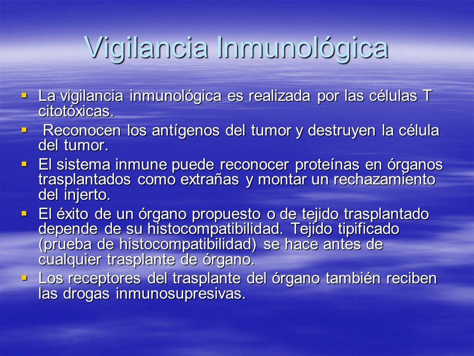 Vigilancia Inmunológica La vigilancia inmunológica es realizada por las células T citotóxicas. La vigilancia inmunológica es realizada por las células