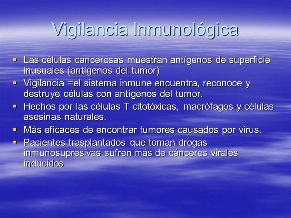 Rechazamiento del Injerto Después de un trasplante de órgano, el sistema inmune tiene ambas respuestas inmunes, la mediada por células y la mediada por anticuerpos= rechazo del injerto Después de un trasplante de órgano, el sistema inmune tiene ambas respuestas inmunes, la mediada por células y la mediada por anticuerpos= rechazo del injerto Un cerrado combate de los antígenos complejos de la histocompatibilidad tiene una respuesta más débil del rechazo del injerto.