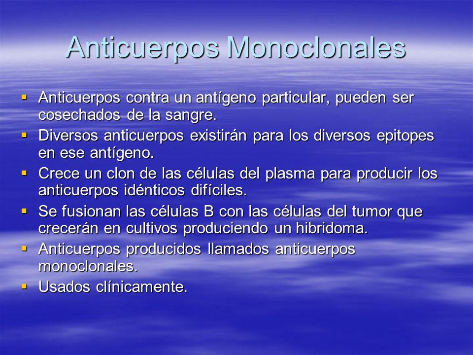 Anticuerpos Monoclonales Anticuerpos contra un antígeno particular, pueden ser cosechados de la sangre. Anticuerpos contra un antígeno particular, pue