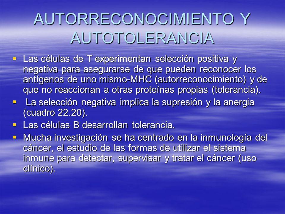 AUTORRECONOCIMIENTO Y AUTOTOLERANCIA Las células de T experimentan selección positiva y negativa para asegurarse de que pueden reconocer los antígenos