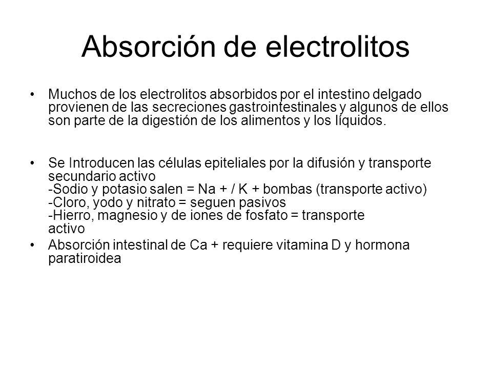 Absorción de electrolitos Muchos de los electrolitos absorbidos por el intestino delgado provienen de las secreciones gastrointestinales y algunos de
