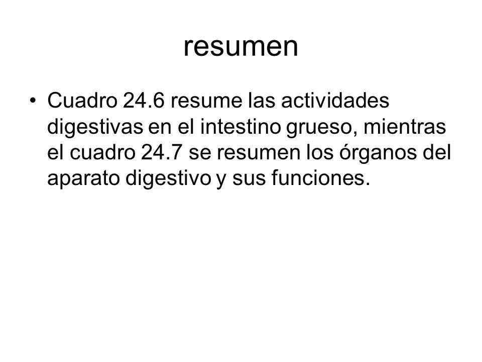 resumen Cuadro 24.6 resume las actividades digestivas en el intestino grueso, mientras el cuadro 24.7 se resumen los órganos del aparato digestivo y sus funciones.