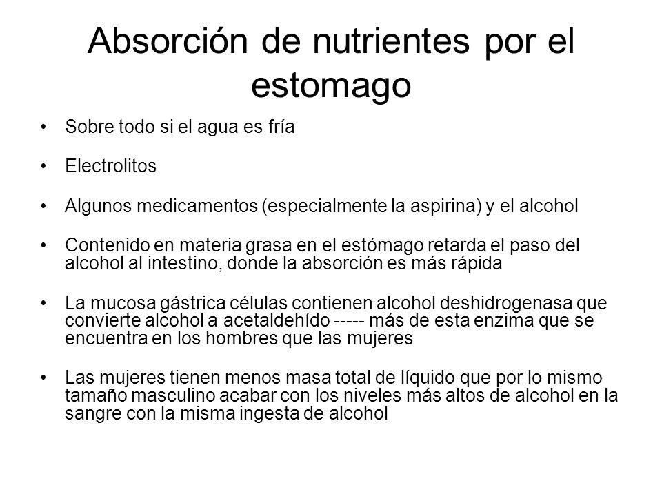 Absorción de nutrientes por el estomago Sobre todo si el agua es fría Electrolitos Algunos medicamentos (especialmente la aspirina) y el alcohol Conte