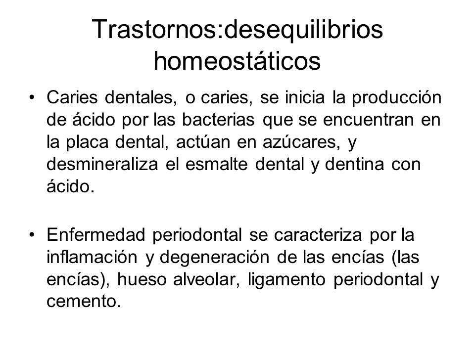 Trastornos:desequilibrios homeostáticos Caries dentales, o caries, se inicia la producción de ácido por las bacterias que se encuentran en la placa dental, actúan en azúcares, y desmineraliza el esmalte dental y dentina con ácido.