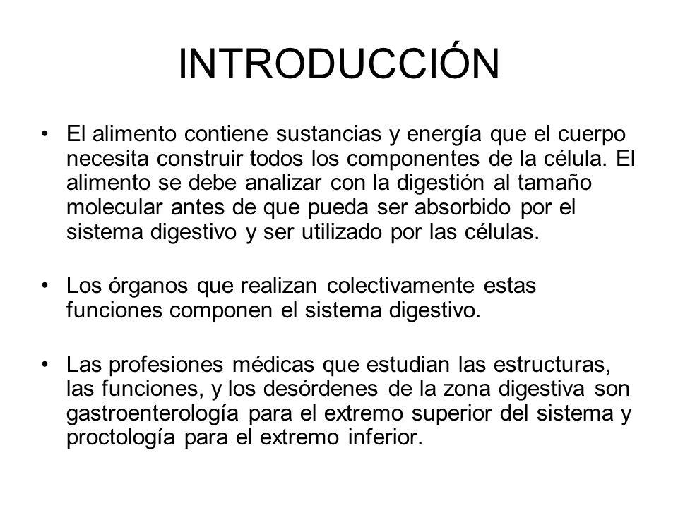 Sistema digestivo Estructura -Gross Anatomy -Histología Función -Mecánica -Química Desarrollo Trastornos
