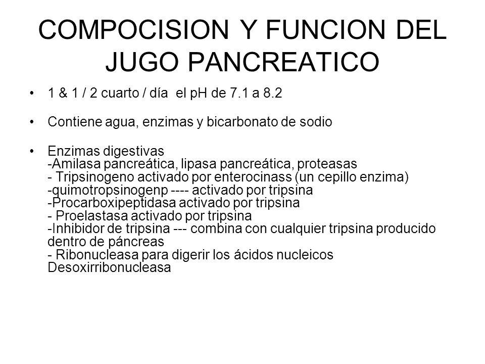 COMPOCISION Y FUNCION DEL JUGO PANCREATICO 1 & 1 / 2 cuarto / día el pH de 7.1 a 8.2 Contiene agua, enzimas y bicarbonato de sodio Enzimas digestivas -Amilasa pancreática, lipasa pancreática, proteasas - Tripsinogeno activado por enterocinass (un cepillo enzima) -quimotropsinogenp ---- activado por tripsina -Procarboxipeptidasa activado por tripsina - Proelastasa activado por tripsina -Inhibidor de tripsina --- combina con cualquier tripsina producido dentro de páncreas - Ribonucleasa para digerir los ácidos nucleicos Desoxirribonucleasa