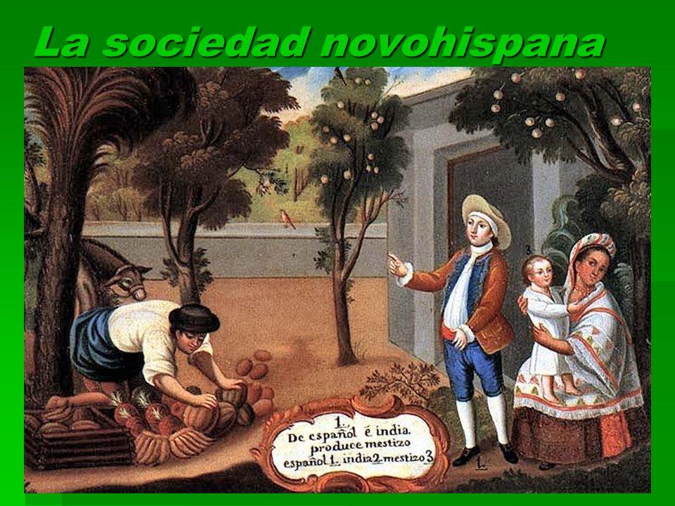 La sociedad novohispana