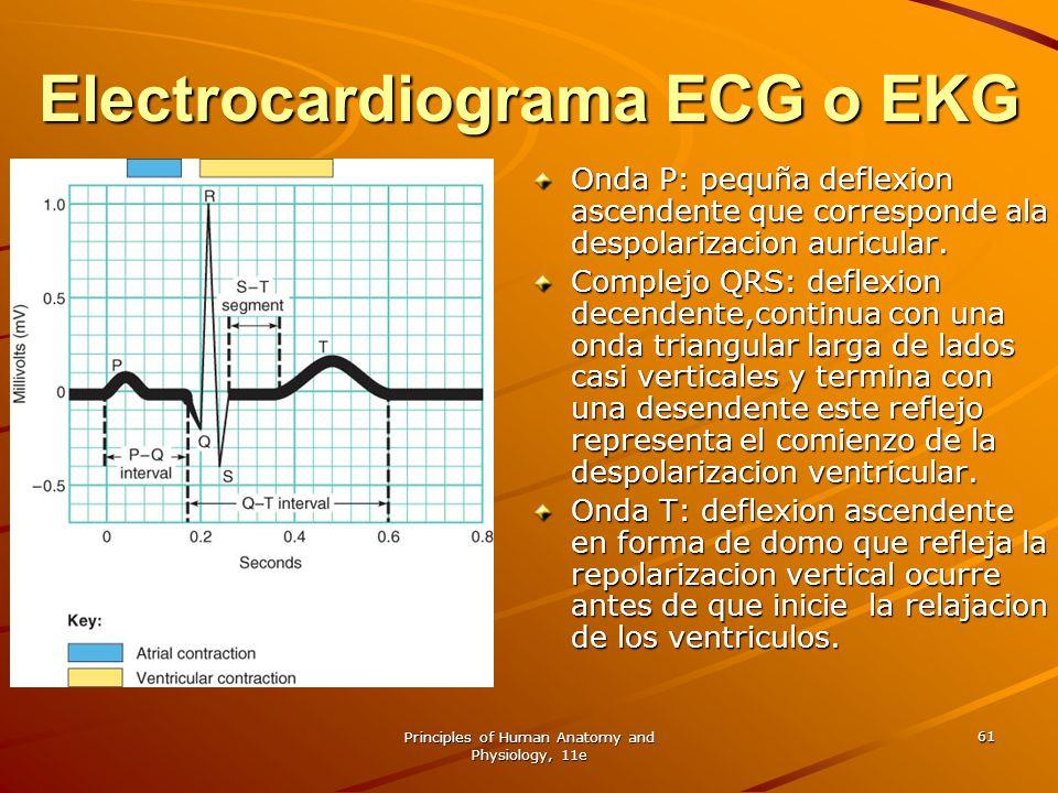 Principles of Human Anatomy and Physiology, 11e 61 Electrocardiograma ECG o EKG Onda P: pequña deflexion ascendente que corresponde ala despolarizacio