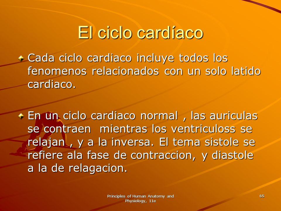 Principles of Human Anatomy and Physiology, 11e 65 El ciclo cardíaco Cada ciclo cardiaco incluye todos los fenomenos relacionados con un solo latido c