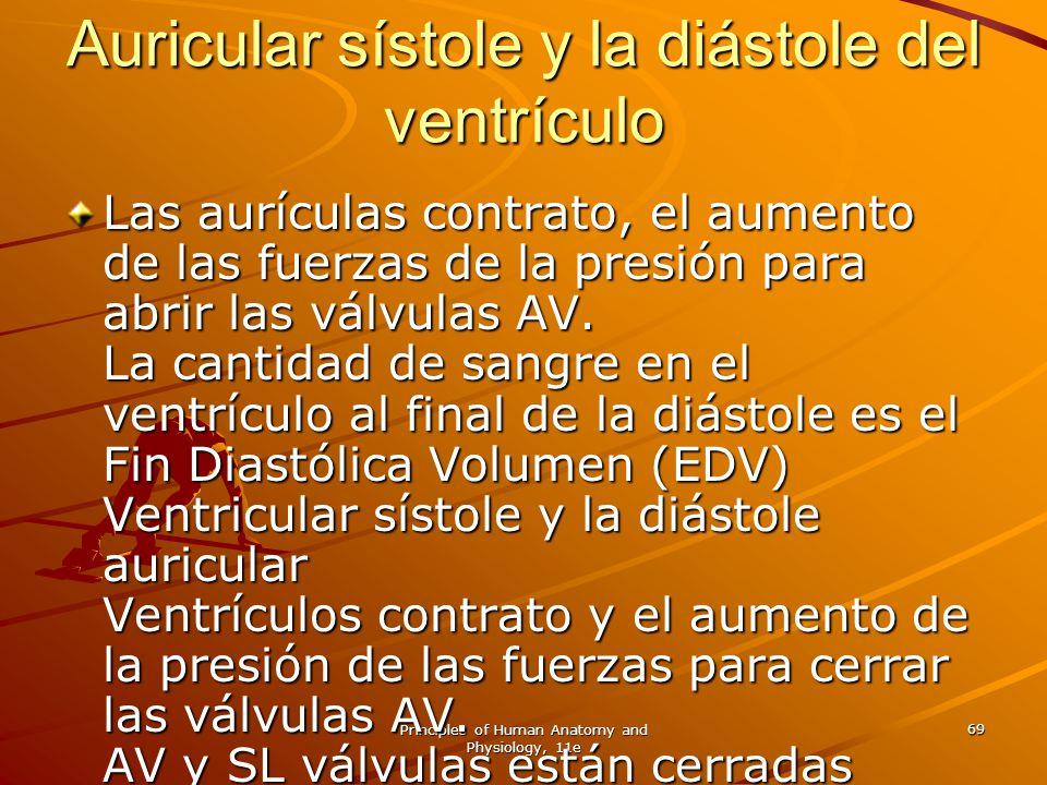 Principles of Human Anatomy and Physiology, 11e 69 Auricular sístole y la diástole del ventrículo Las aurículas contrato, el aumento de las fuerzas de