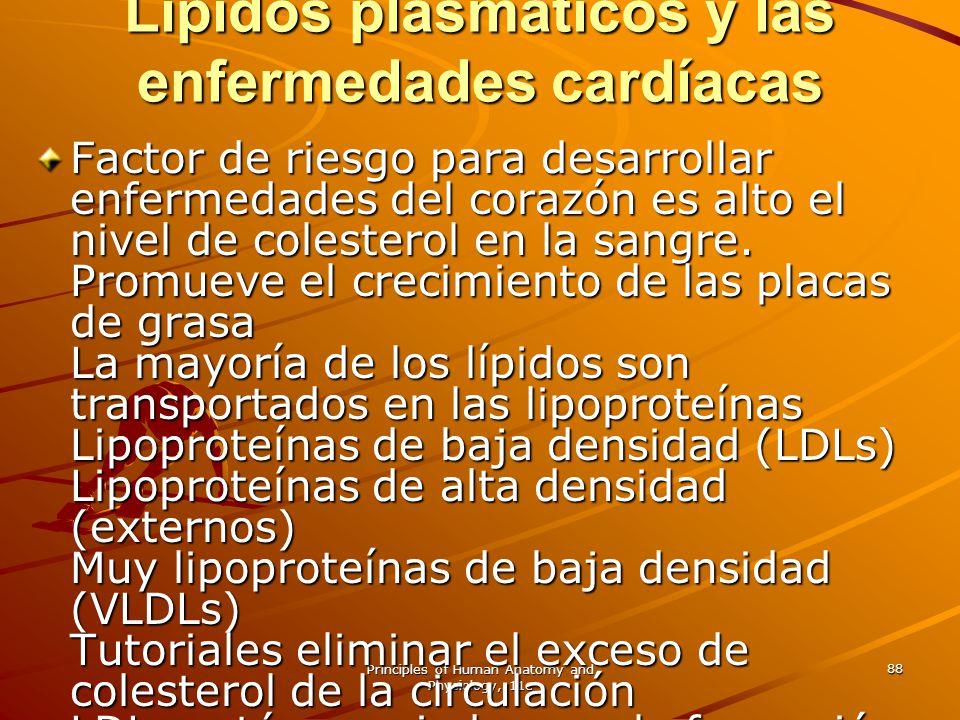 Principles of Human Anatomy and Physiology, 11e 88 Lípidos plasmáticos y las enfermedades cardíacas Factor de riesgo para desarrollar enfermedades del