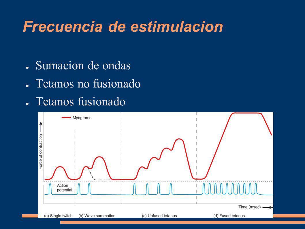 Frecuencia de estimulacion Sumacion de ondas Tetanos no fusionado Tetanos fusionado
