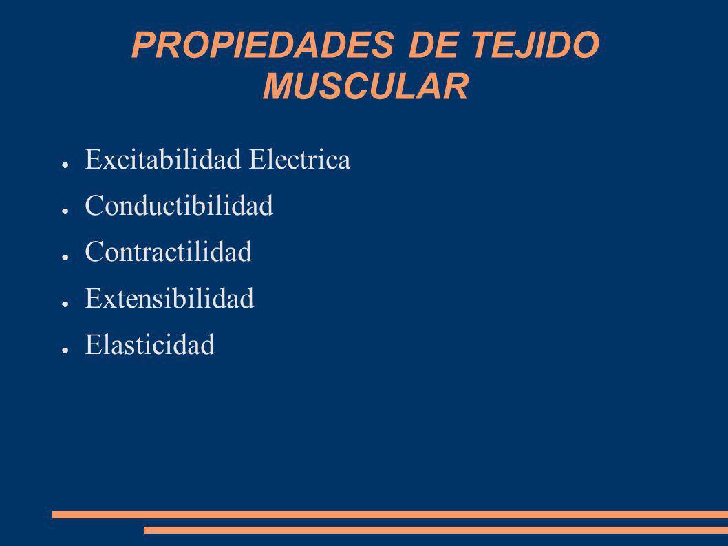 PROPIEDADES DE TEJIDO MUSCULAR Excitabilidad Electrica Conductibilidad Contractilidad Extensibilidad Elasticidad