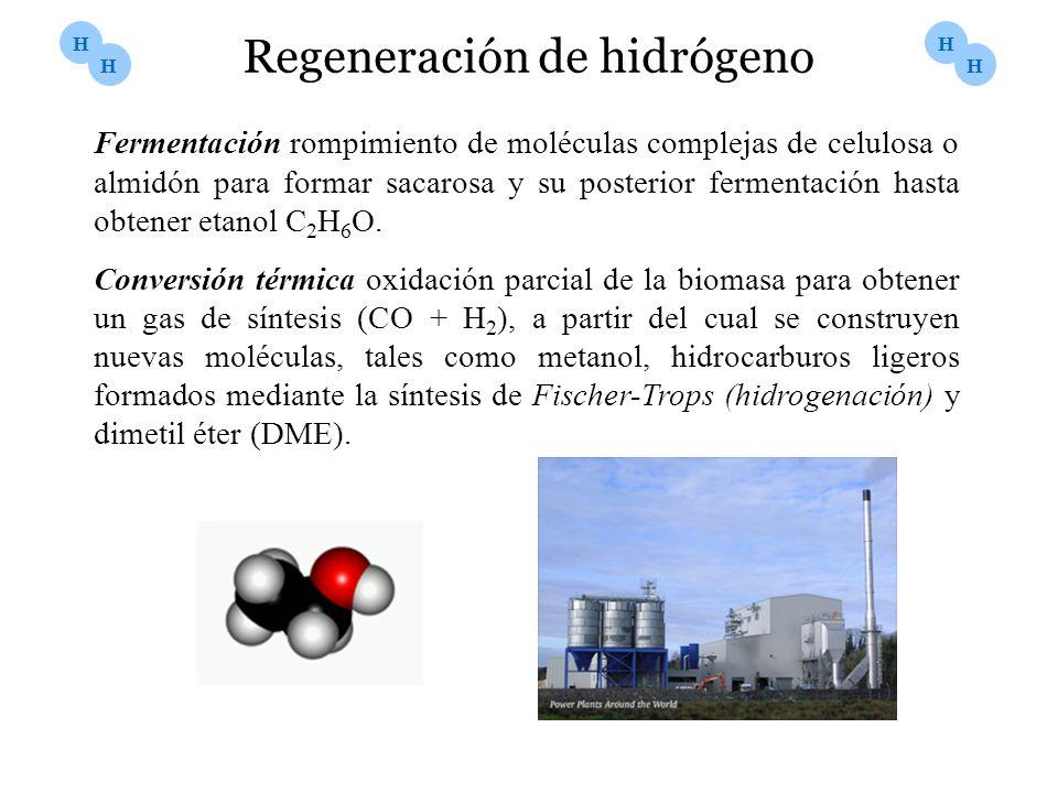 H H H H Fermentación rompimiento de moléculas complejas de celulosa o almidón para formar sacarosa y su posterior fermentación hasta obtener etanol C
