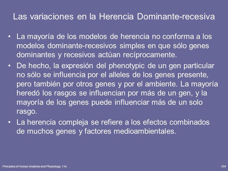 Principles of Human Anatomy and Physiology, 11e104 Las variaciones en la Herencia Dominante-recesiva La mayoría de los modelos de herencia no conforma a los modelos dominante-recesivos simples en que sólo genes dominantes y recesivos actúan recíprocamente.