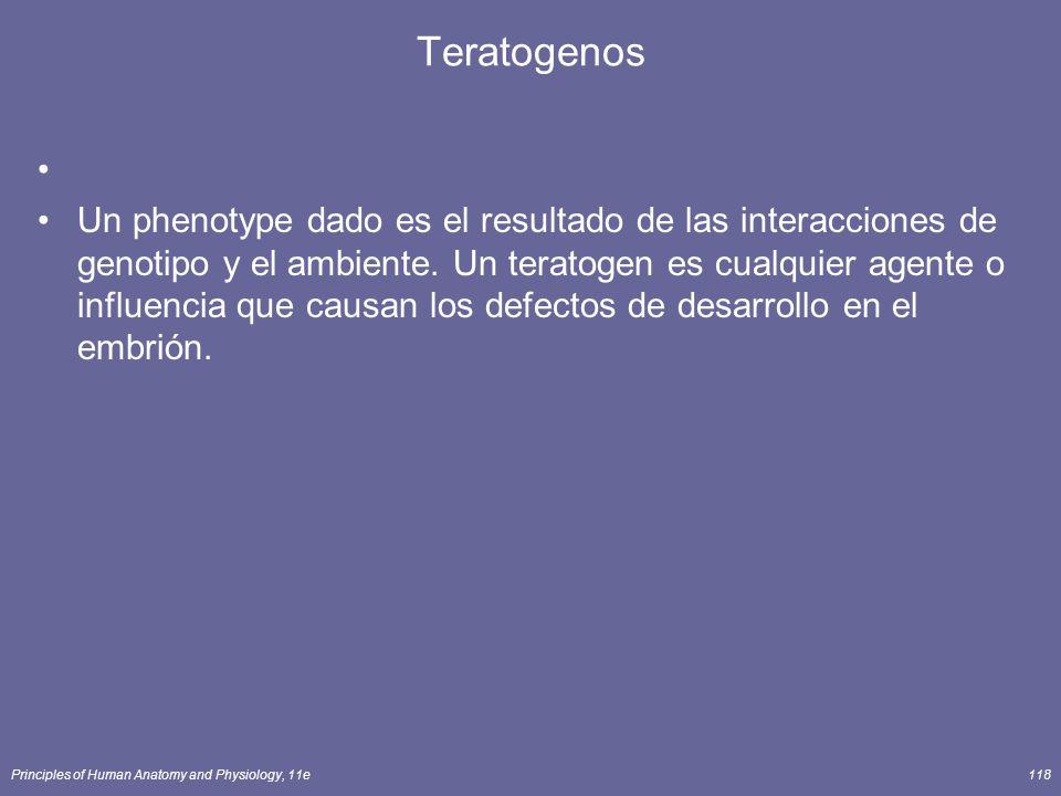 Principles of Human Anatomy and Physiology, 11e118 Teratogenos Un phenotype dado es el resultado de las interacciones de genotipo y el ambiente. Un te