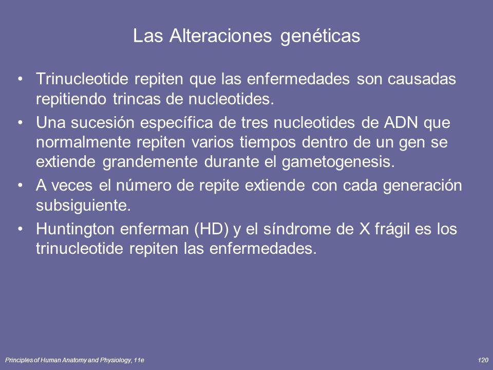 Principles of Human Anatomy and Physiology, 11e120 Las Alteraciones genéticas Trinucleotide repiten que las enfermedades son causadas repitiendo trincas de nucleotides.