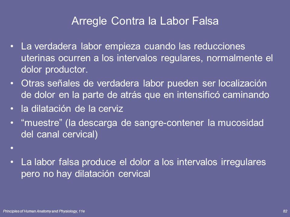 Principles of Human Anatomy and Physiology, 11e82 Arregle Contra la Labor Falsa La verdadera labor empieza cuando las reducciones uterinas ocurren a los intervalos regulares, normalmente el dolor productor.