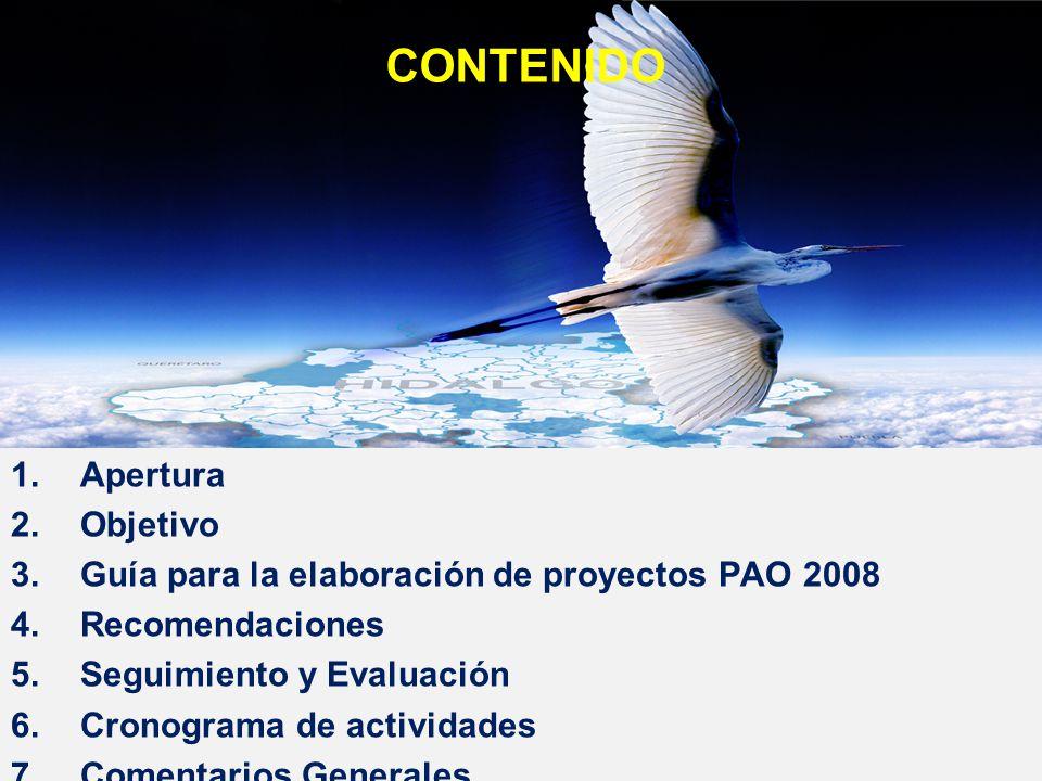 1.Apertura 2.Objetivo 3.Guía para la elaboración de proyectos PAO 2008 4.Recomendaciones 5.Seguimiento y Evaluación 6.Cronograma de actividades 7.Come