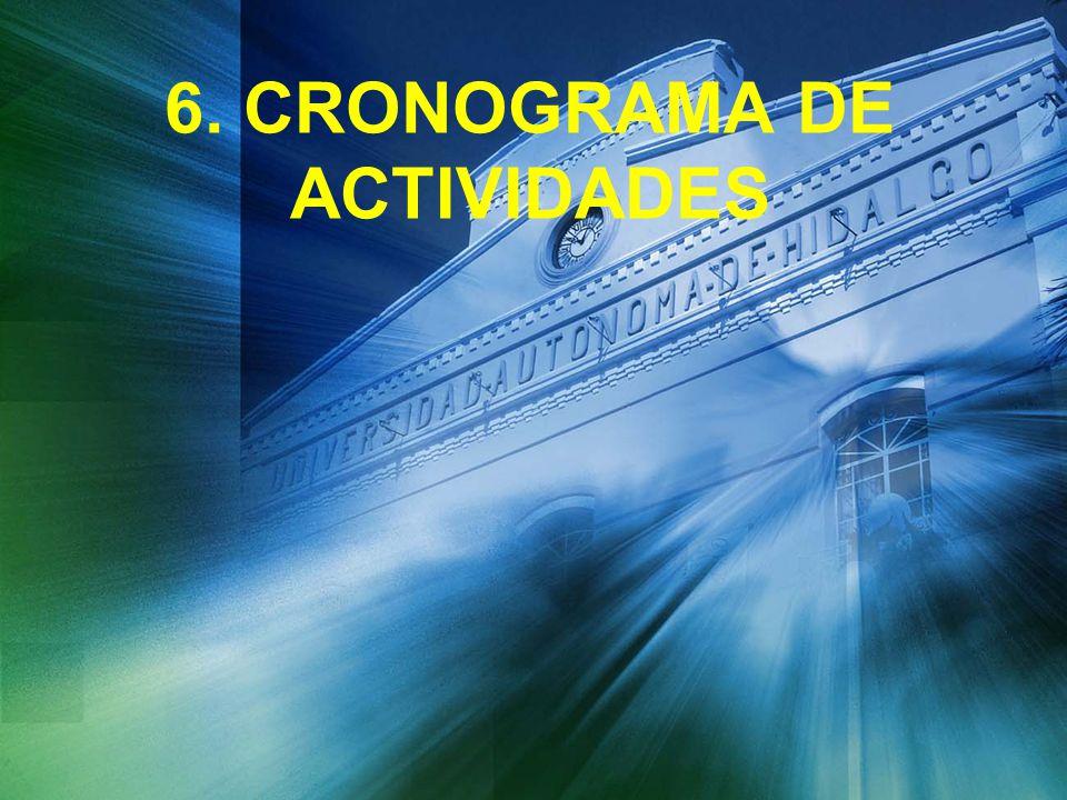 6. CRONOGRAMA DE ACTIVIDADES