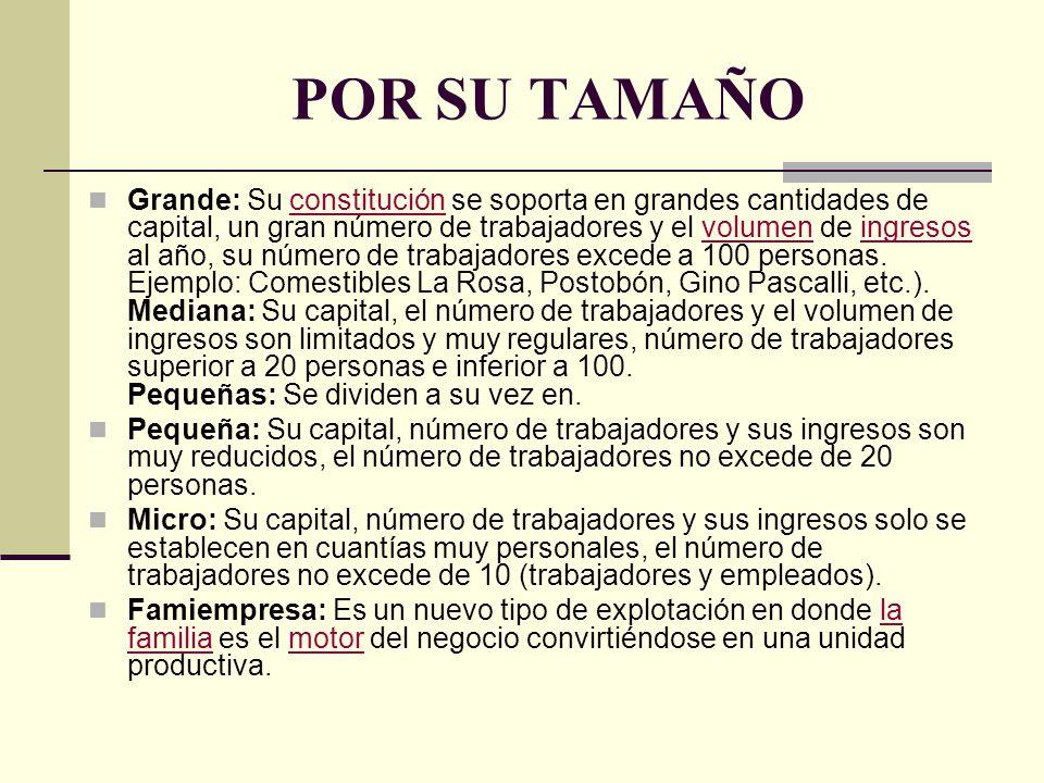 POR SU TAMAÑO Grande: Su constitución se soporta en grandes cantidades de capital, un gran número de trabajadores y el volumen de ingresos al año, su