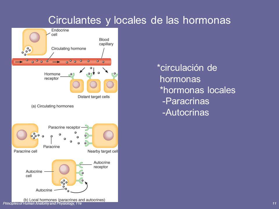 Principles of Human Anatomy and Physiology, 11e11 Circulantes y locales de las hormonas *circulación de hormonas *hormonas locales -Paracrinas -Autocr
