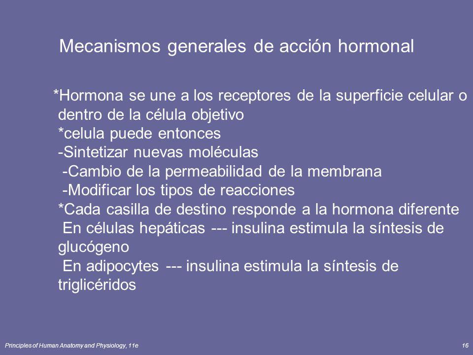 Principles of Human Anatomy and Physiology, 11e16 Mecanismos generales de acción hormonal *Hormona se une a los receptores de la superficie celular o