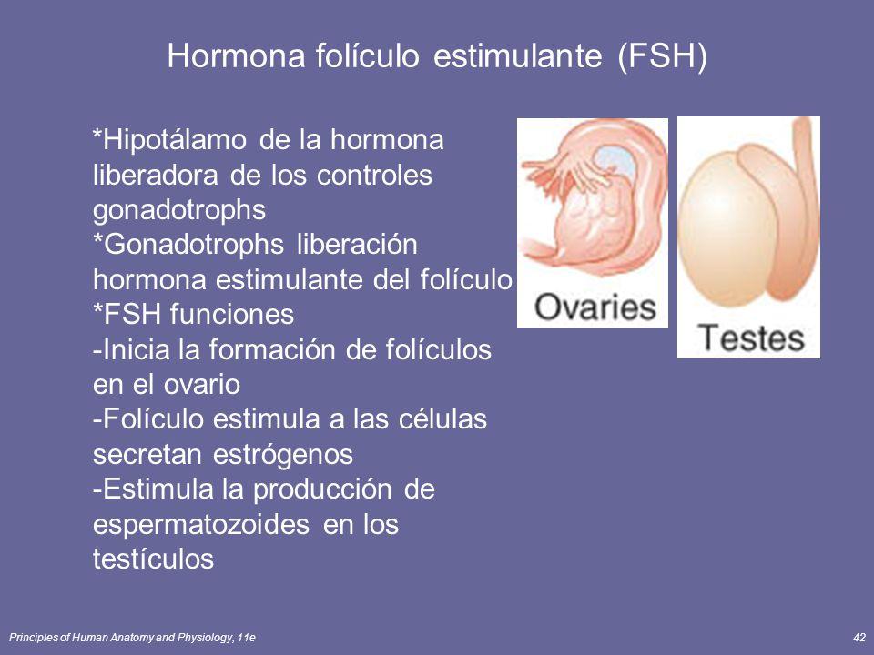 Principles of Human Anatomy and Physiology, 11e42 Hormona folículo estimulante (FSH) *Hipotálamo de la hormona liberadora de los controles gonadotroph