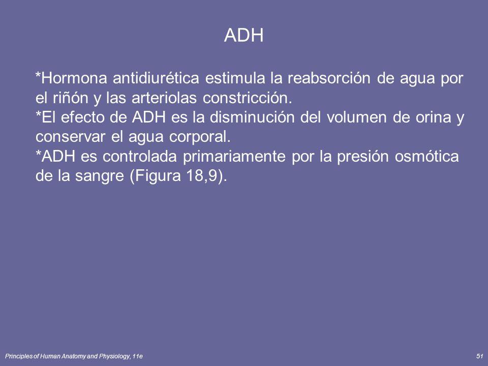 Principles of Human Anatomy and Physiology, 11e51 ADH *Hormona antidiurética estimula la reabsorción de agua por el riñón y las arteriolas constricció
