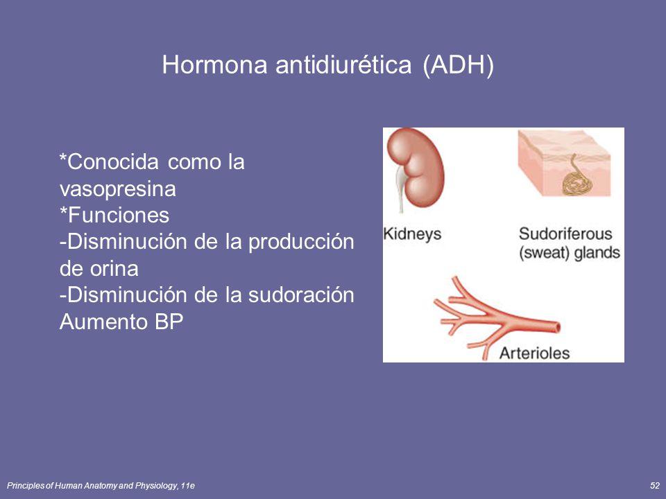 Principles of Human Anatomy and Physiology, 11e52 Hormona antidiurética (ADH) *Conocida como la vasopresina *Funciones -Disminución de la producción d
