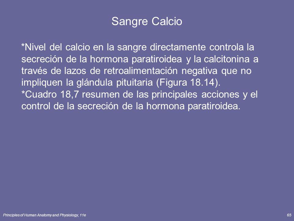 Principles of Human Anatomy and Physiology, 11e65 Sangre Calcio *Nivel del calcio en la sangre directamente controla la secreción de la hormona parati