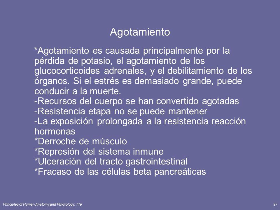 Principles of Human Anatomy and Physiology, 11e97 Agotamiento *Agotamiento es causada principalmente por la pérdida de potasio, el agotamiento de los