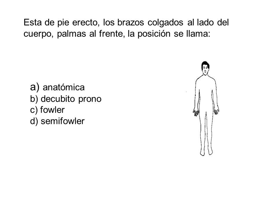Esta de pie erecto, los brazos colgados al lado del cuerpo, palmas al frente, la posición se llama: a) anatómica b) decubito prono c) fowler d) semifowler