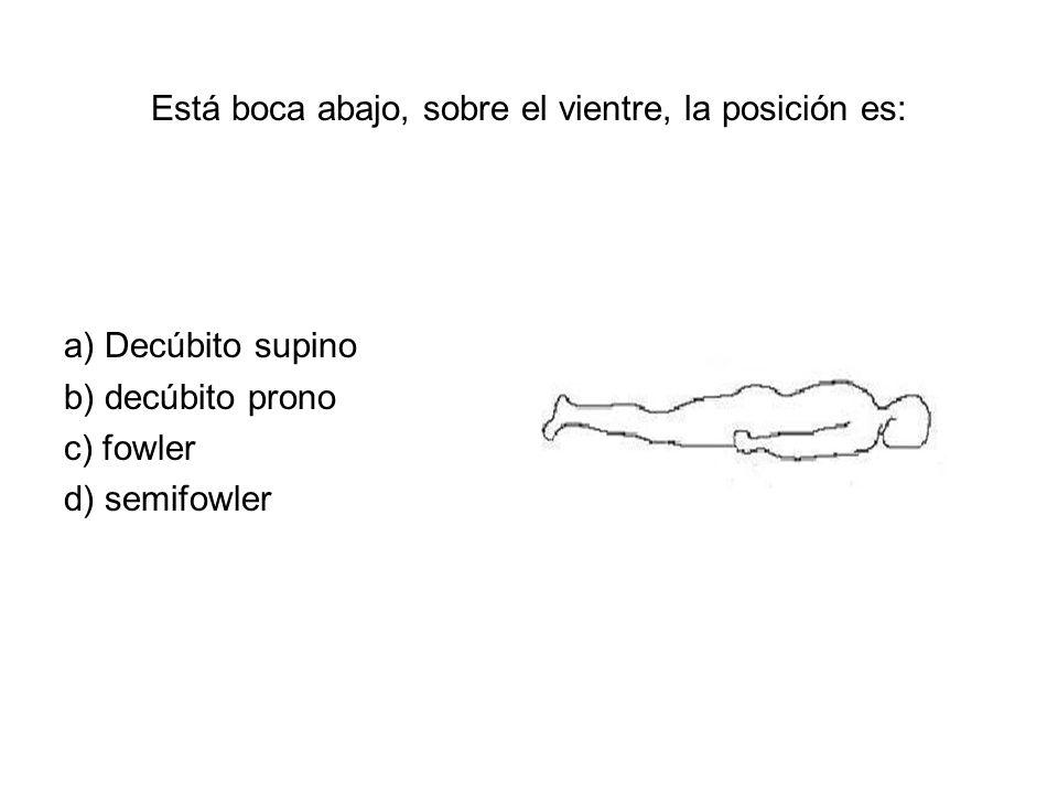 Está boca abajo, sobre el vientre, la posición es: a) Decúbito supino b) decúbito prono c) fowler d) semifowler