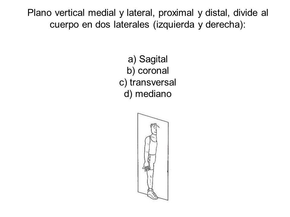 Plano vertical medial y lateral, proximal y distal, divide al cuerpo en dos laterales (izquierda y derecha): a) Sagital b) coronal c) transversal d) mediano