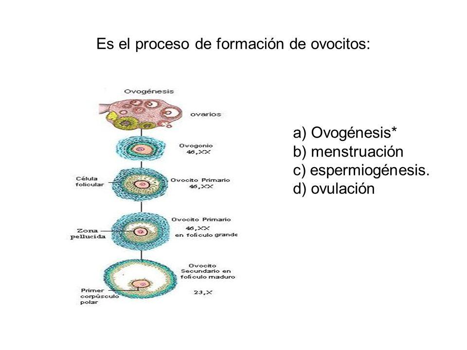 Es el proceso de formación de ovocitos: a) Ovogénesis* b) menstruación c) espermiogénesis. d) ovulación