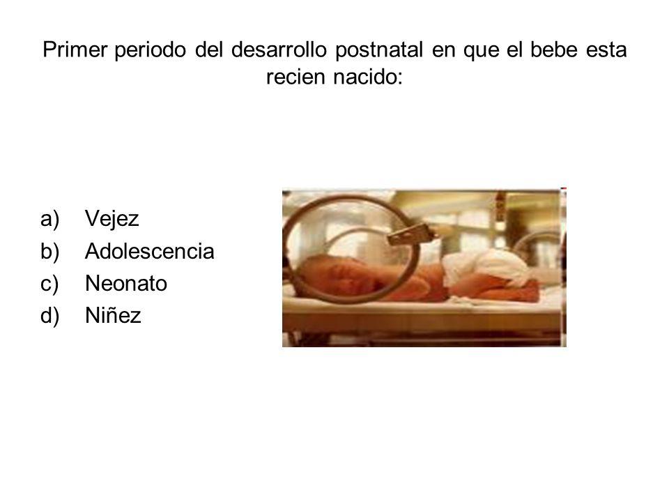 Primer periodo del desarrollo postnatal en que el bebe esta recien nacido: a)Vejez b)Adolescencia c)Neonato d)Niñez