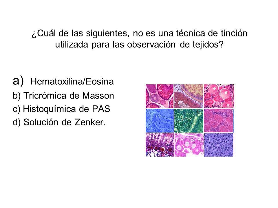 ¿Cuál de las siguientes, no es una técnica de tinción utilizada para las observación de tejidos? a) Hematoxilina/Eosina b) Tricrómica de Masson c) His