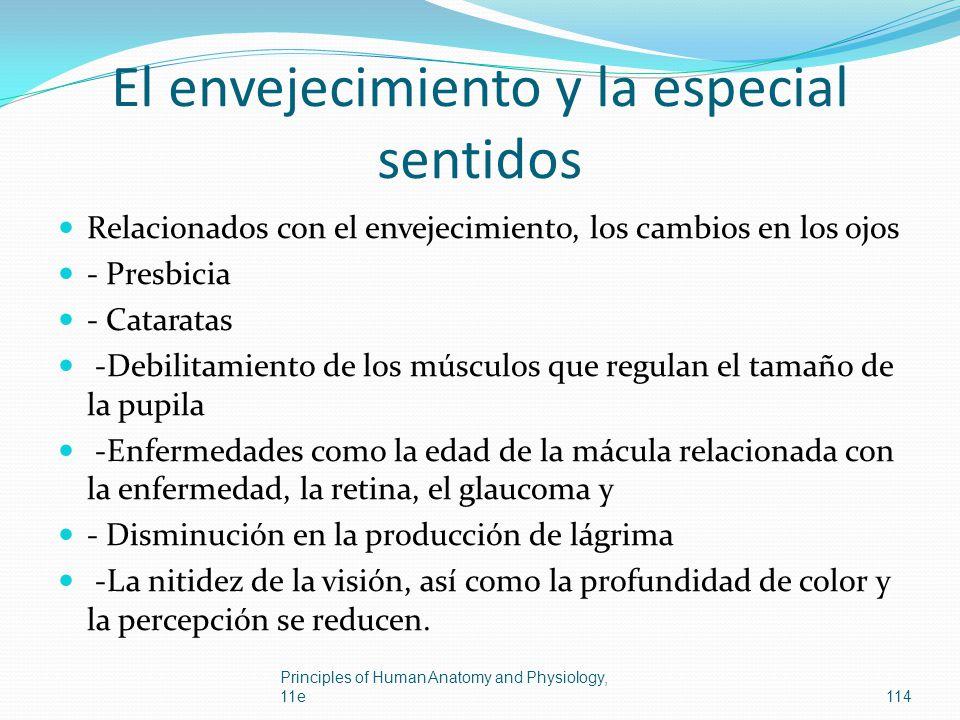 El envejecimiento y la especial sentidos Relacionados con el envejecimiento, los cambios en los ojos - Presbicia - Cataratas -Debilitamiento de los mú