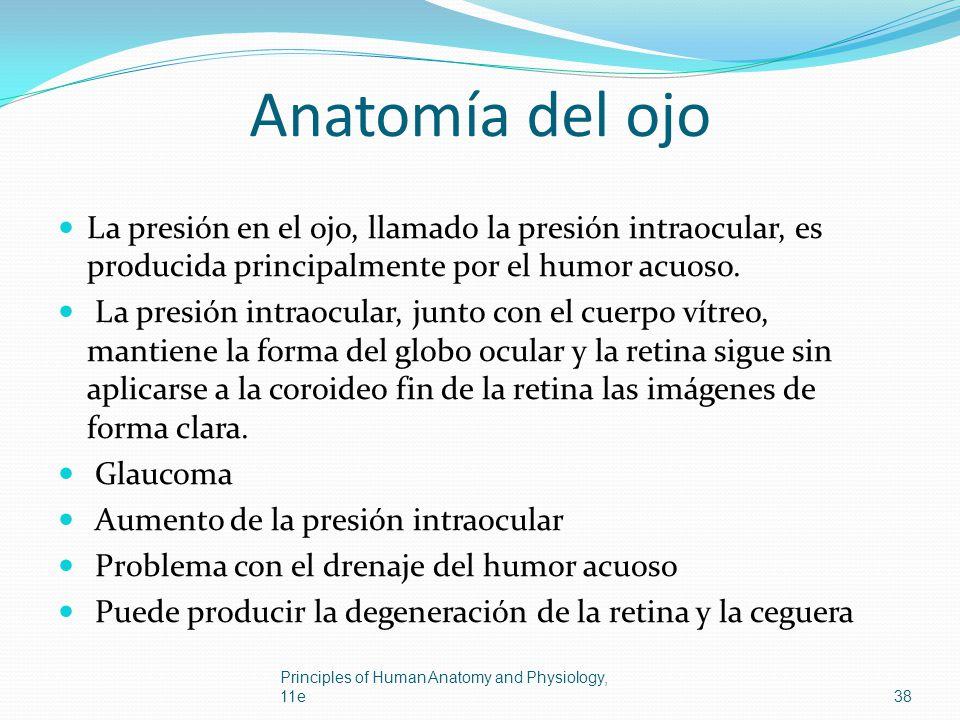 Anatomía del ojo La presión en el ojo, llamado la presión intraocular, es producida principalmente por el humor acuoso. La presión intraocular, junto