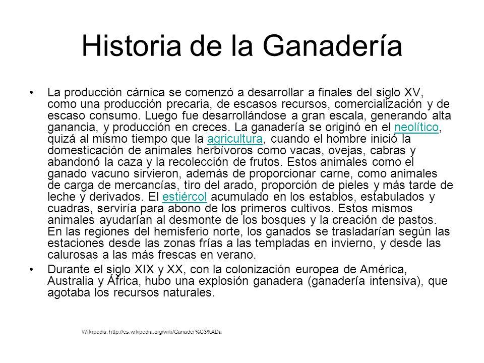 Historia de la Ganadería La producción cárnica se comenzó a desarrollar a finales del siglo XV, como una producción precaria, de escasos recursos, com