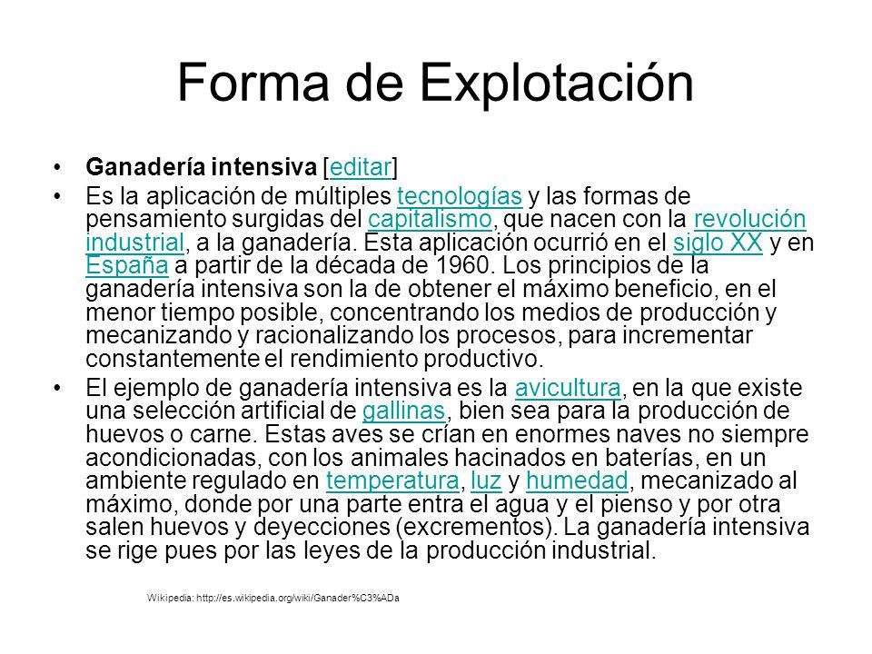 Forma de Explotación Ganadería intensiva [editar]editar Es la aplicación de múltiples tecnologías y las formas de pensamiento surgidas del capitalismo