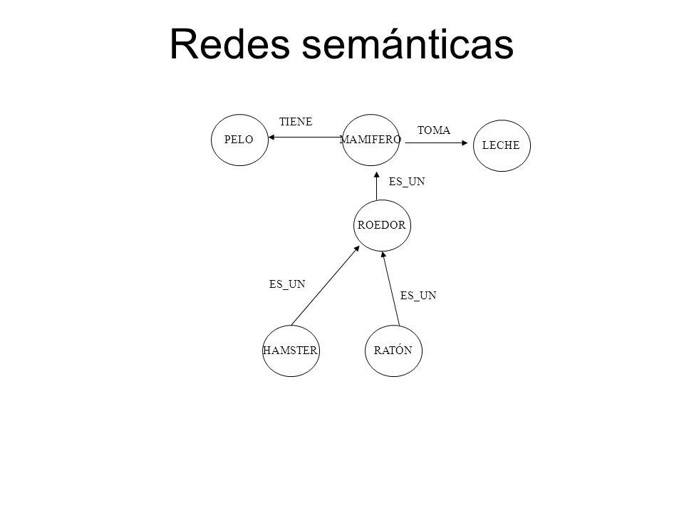 Redes semánticas PELOMAMIFERO LECHE ROEDOR RATÓNHAMSTER TIENE TOMA ES_UN