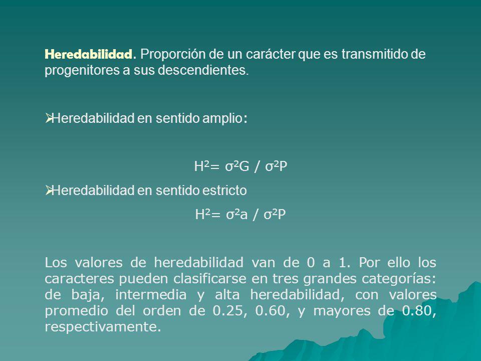 Heredabilidad. Proporción de un carácter que es transmitido de progenitores a sus descendientes. Heredabilidad en sentido amplio : H 2 = σ 2 G / σ 2 P