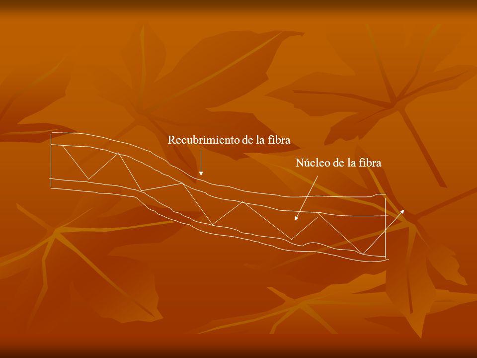 Recubrimiento de la fibra Núcleo de la fibra