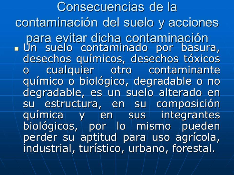 Consecuencias de la contaminación del suelo y acciones para evitar dicha contaminación Un suelo contaminado por basura, desechos químicos, desechos tó