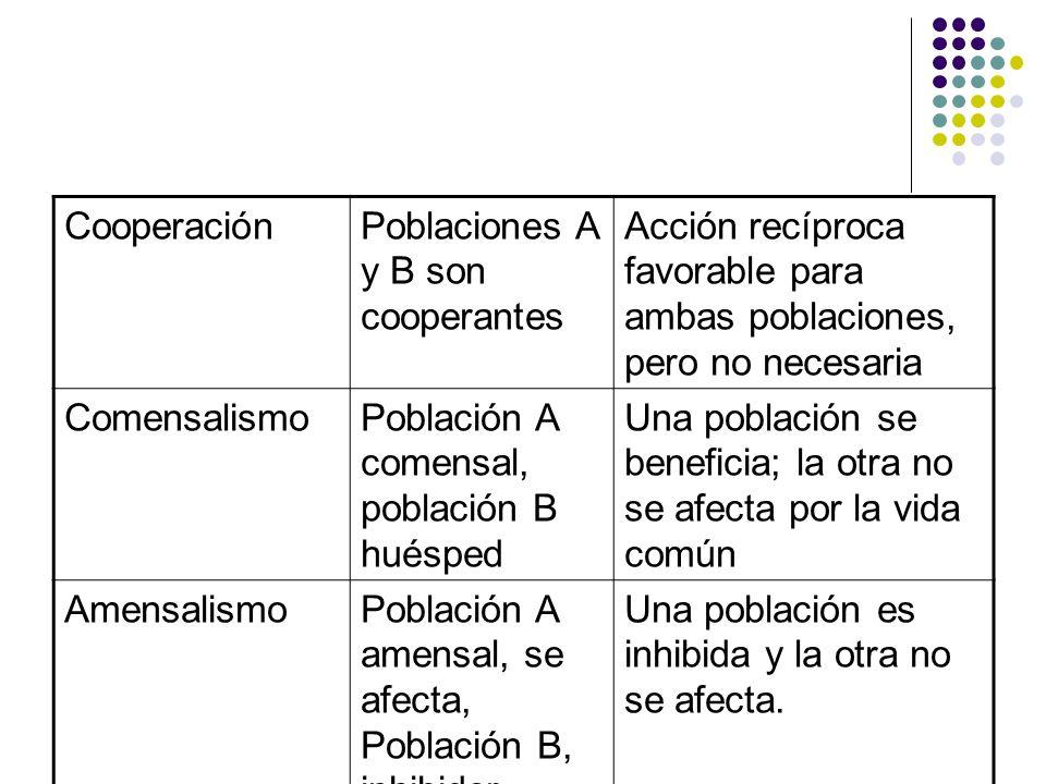 CooperaciónPoblaciones A y B son cooperantes Acción recíproca favorable para ambas poblaciones, pero no necesaria ComensalismoPoblación A comensal, po