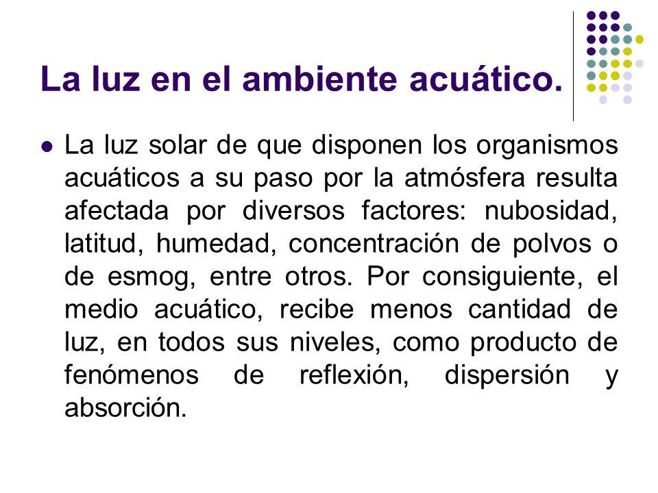 La luz en el ambiente acuático. La luz solar de que disponen los organismos acuáticos a su paso por la atmósfera resulta afectada por diversos factore