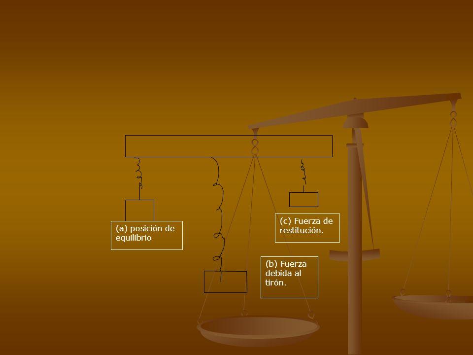 (a) posición de equilibrio (b) Fuerza debida al tirón. (c) Fuerza de restitución.